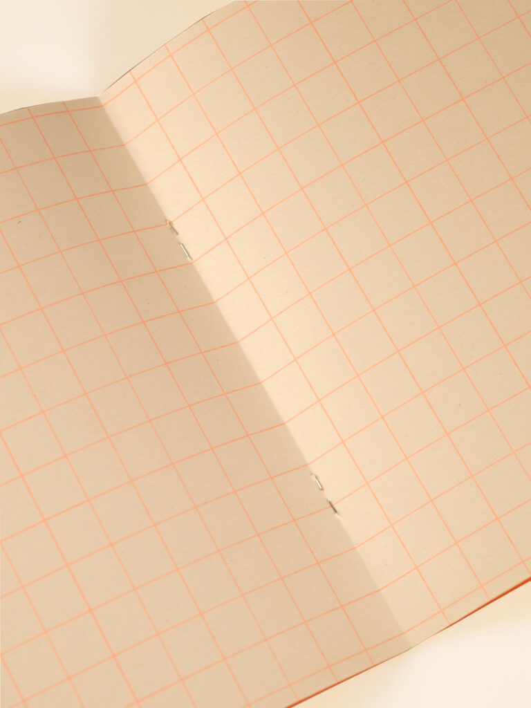 Risograph Notebook orange with large grids