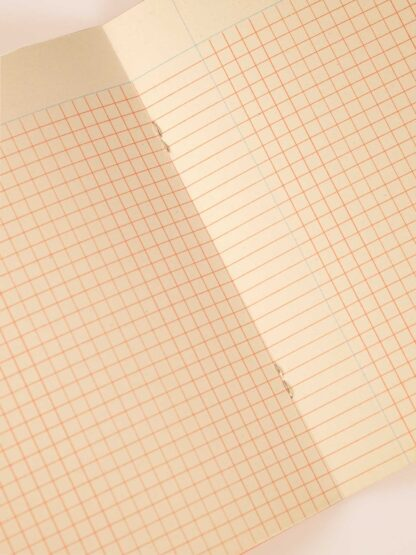 risoprint notebook red grids with light blue column